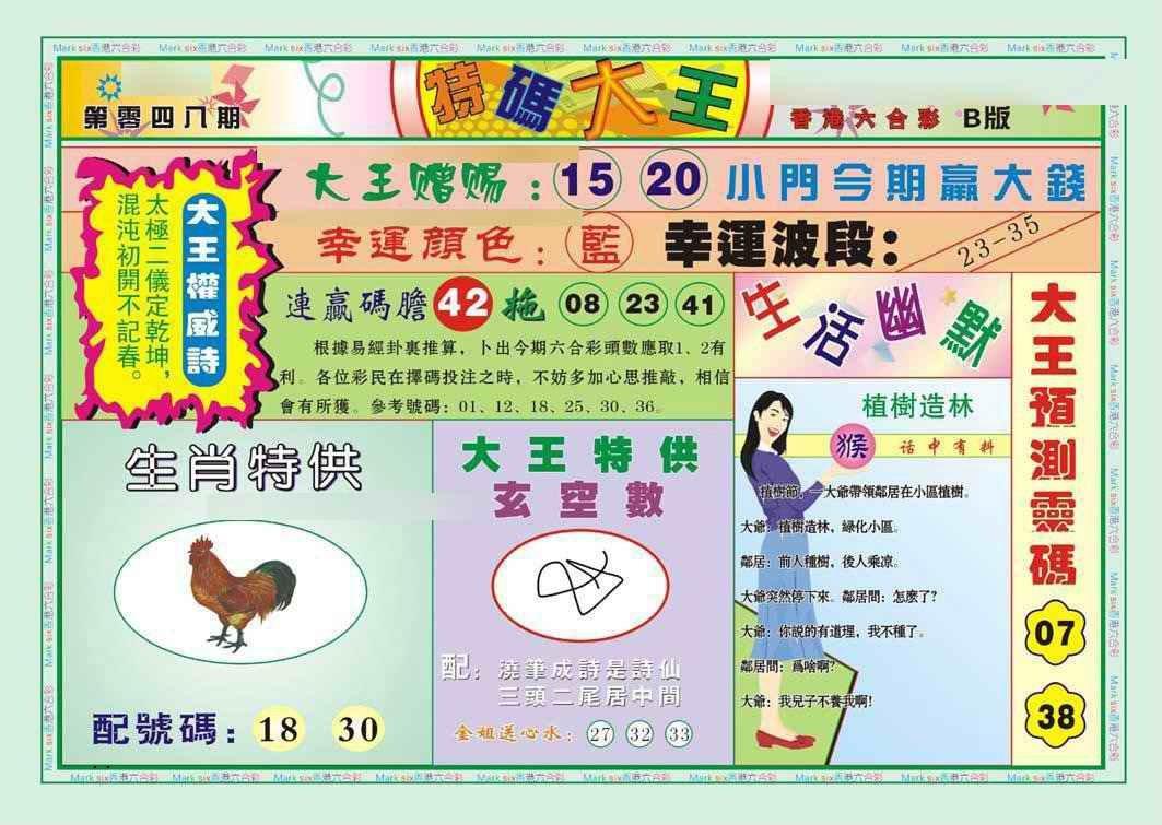 048期特码大王B(新图)