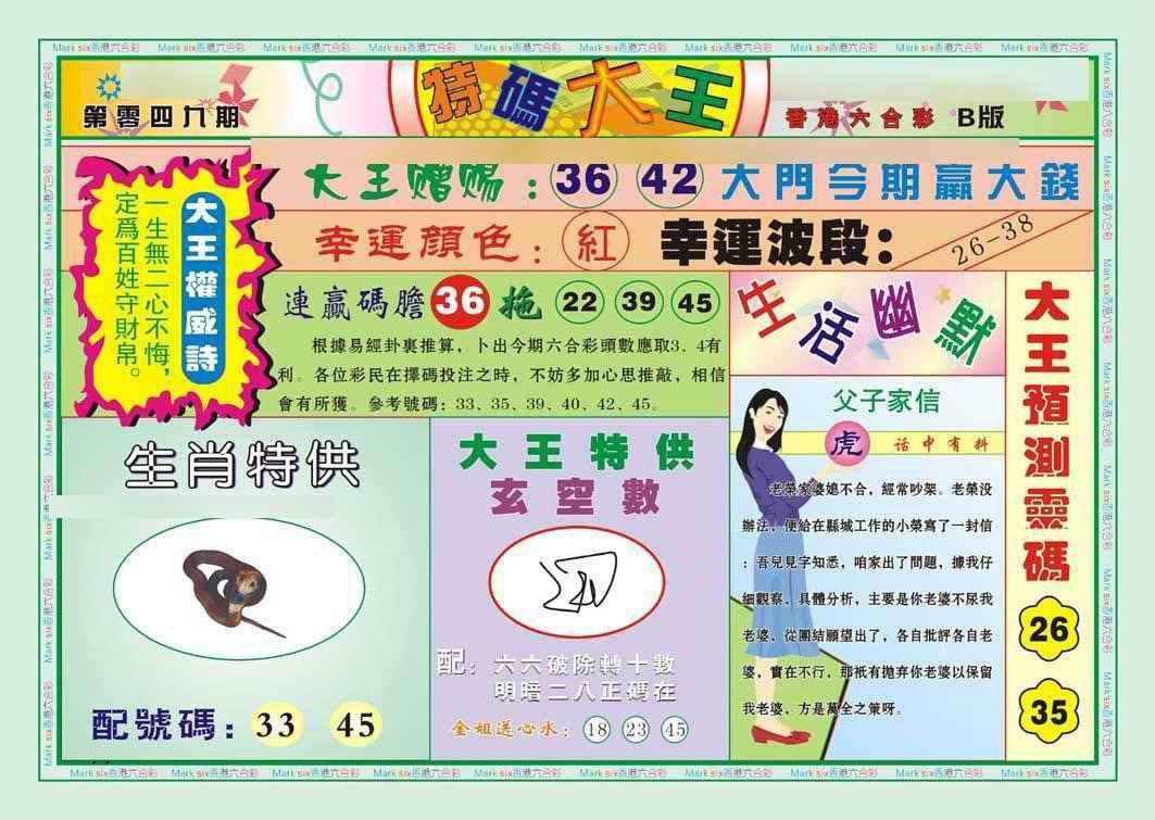 049期特码大王B(新图)