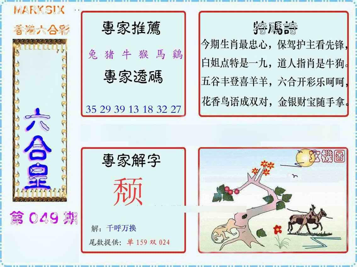049期马经六合皇(新图)
