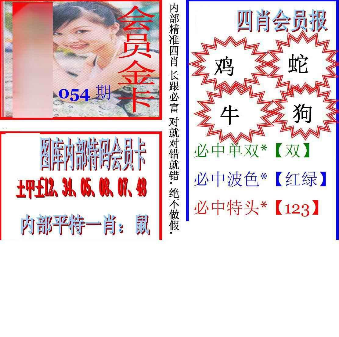054期马经四肖会员报(新图)