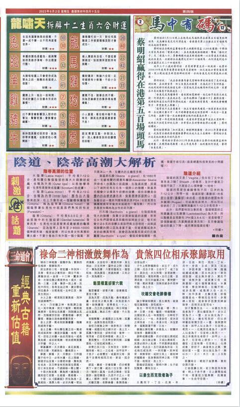 062期新报跑狗-2(背面)