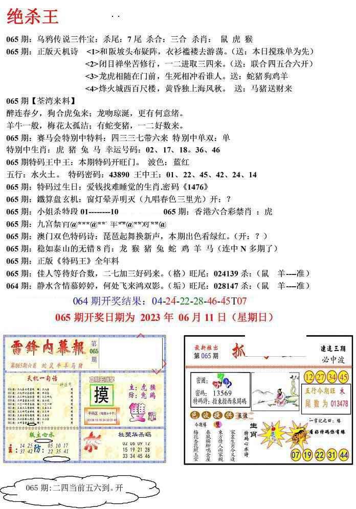 065期蓝天报(绝杀王)