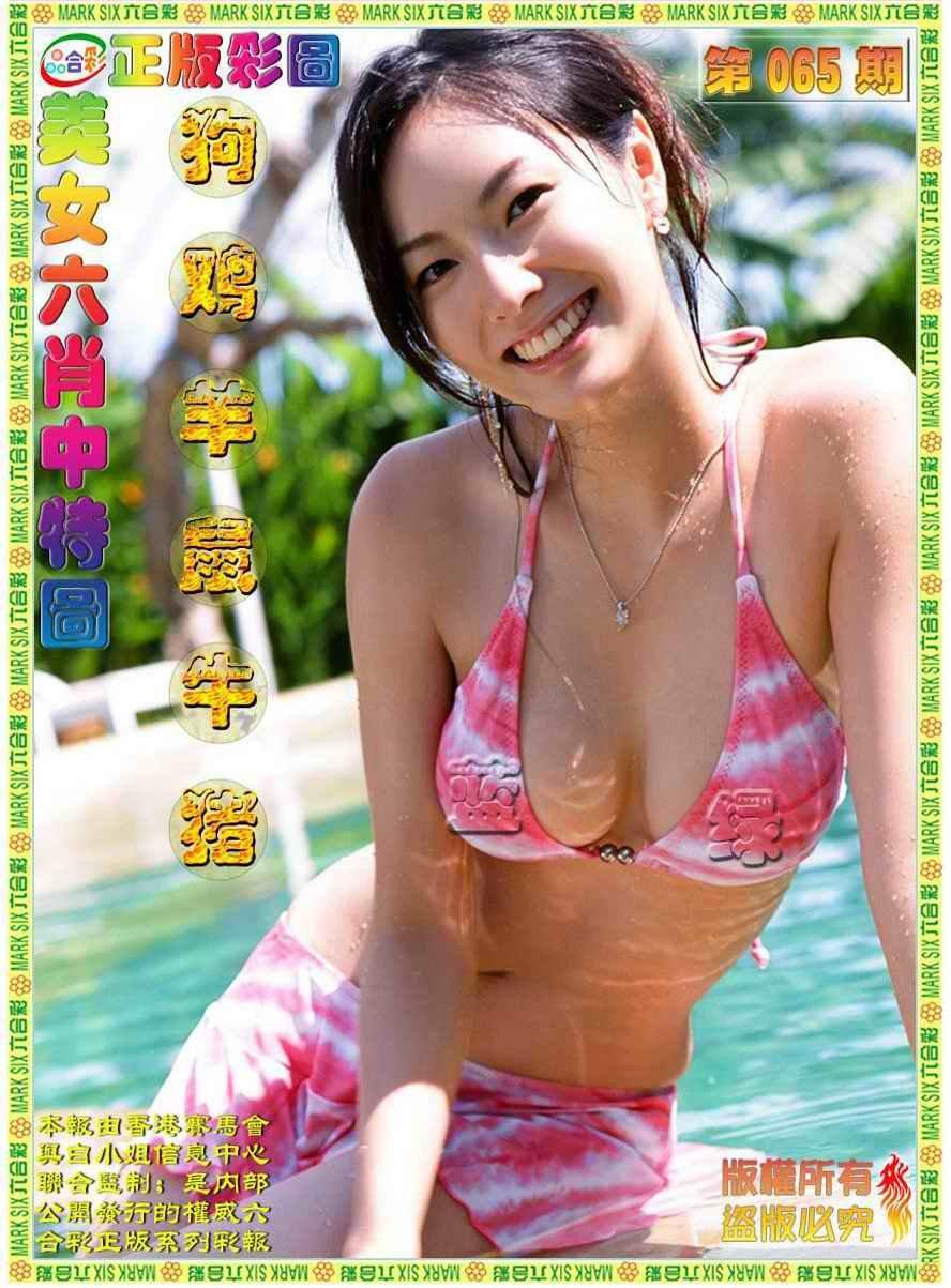 065期美女六肖图