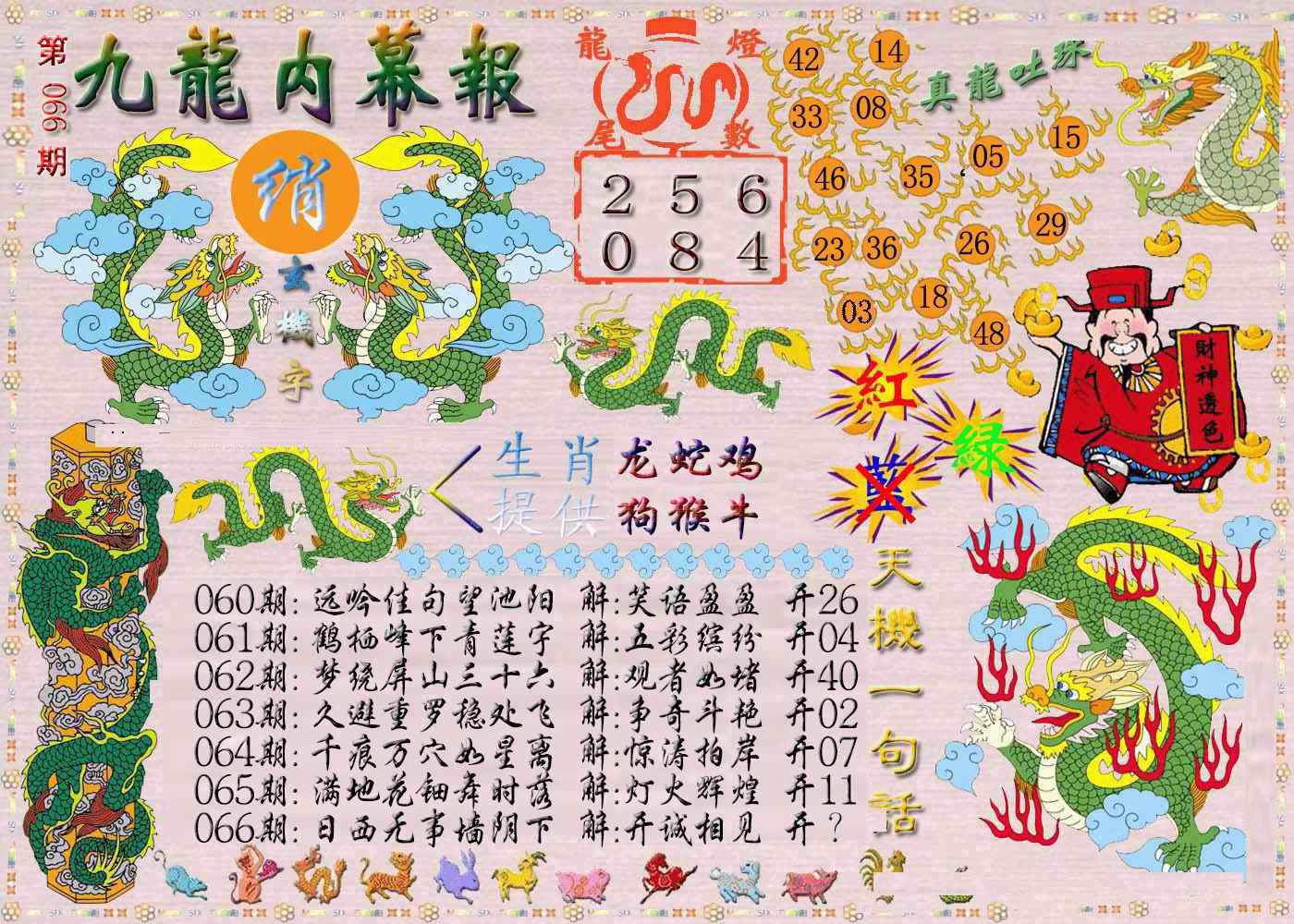 066期九龙内幕报
