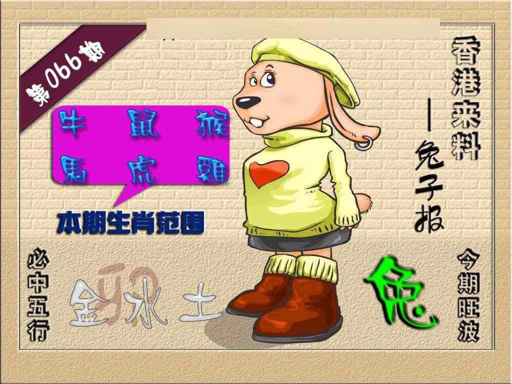 066期(香港来料)兔报