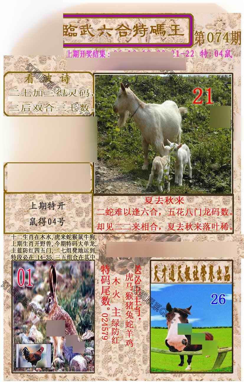074期临武六合特码王