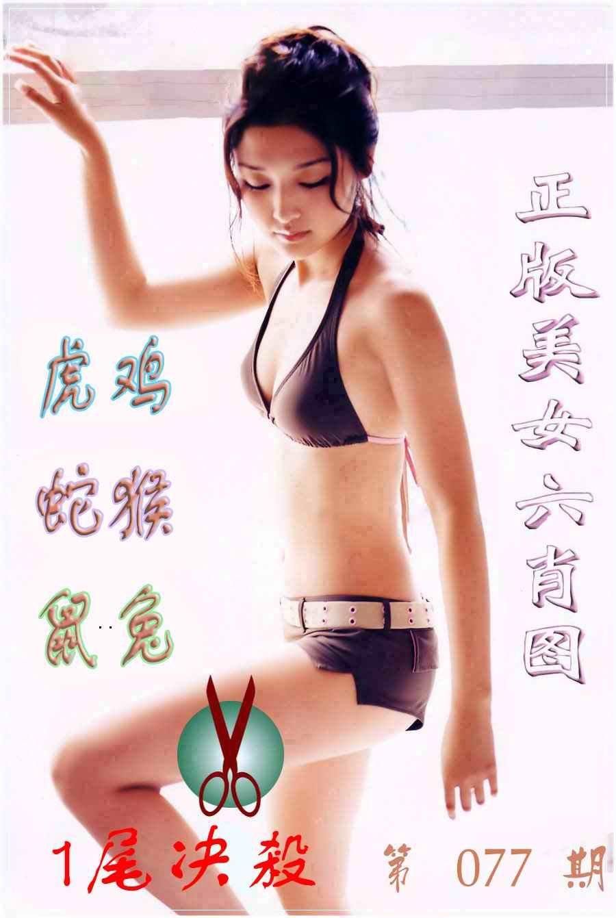 077期美女六肖图B
