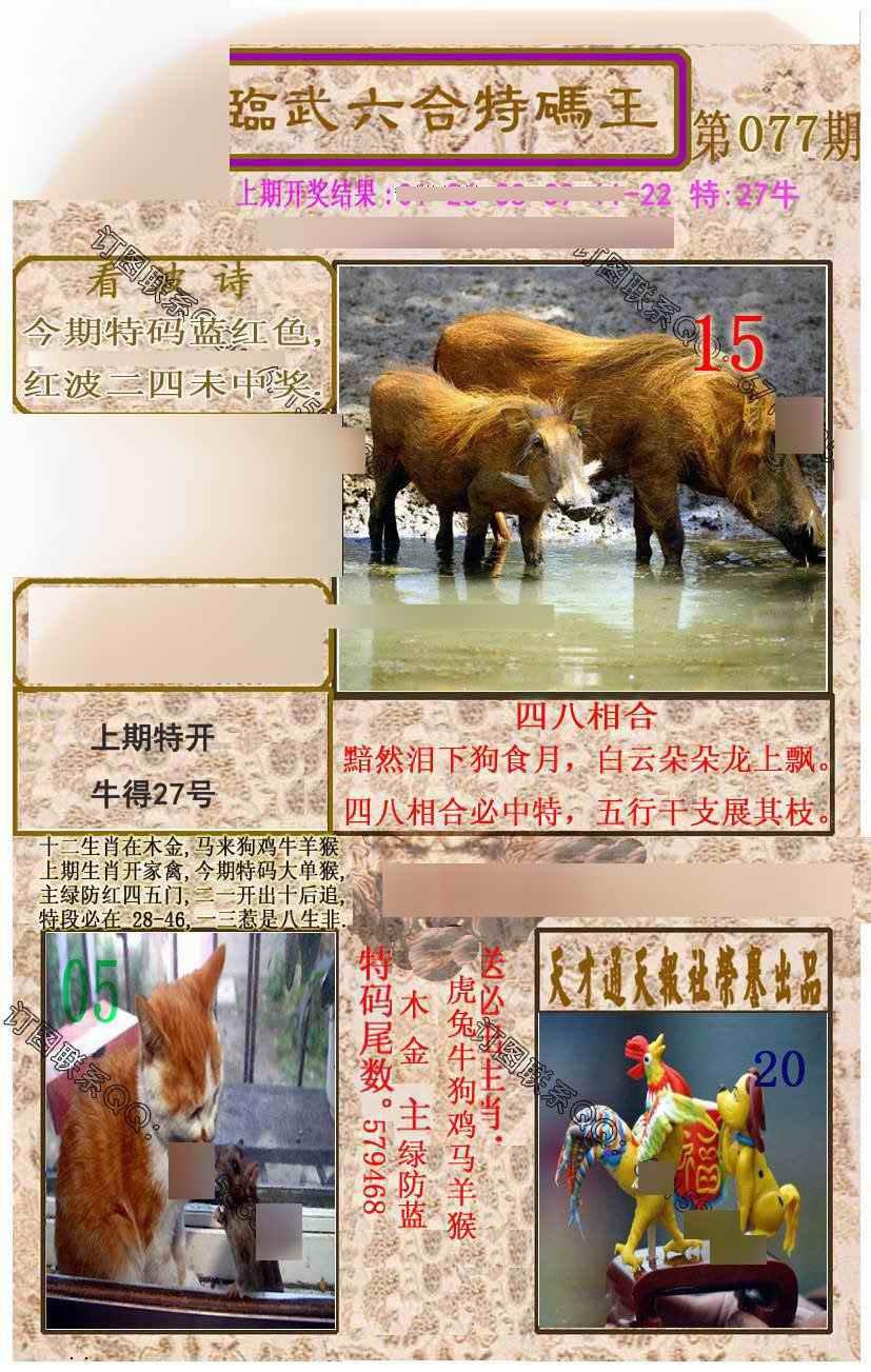 077期临武六合特码王