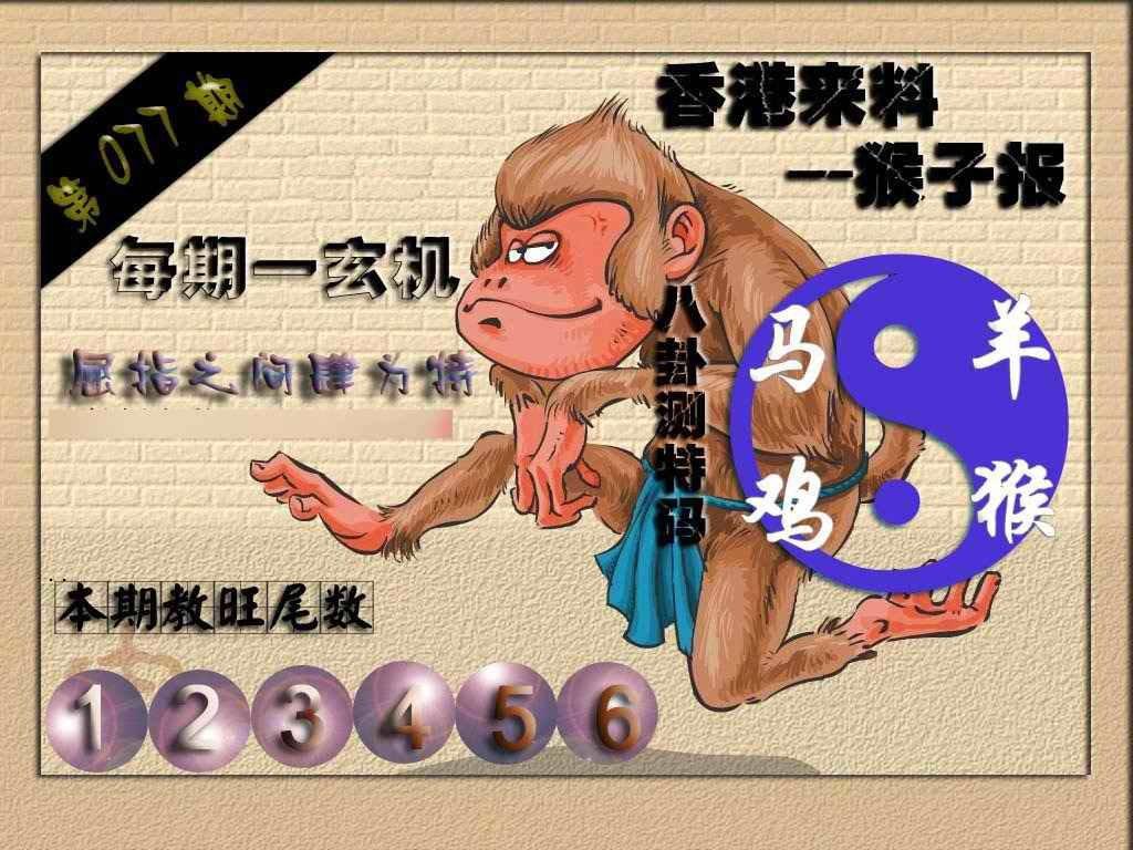 077期(香港来料)猴报
