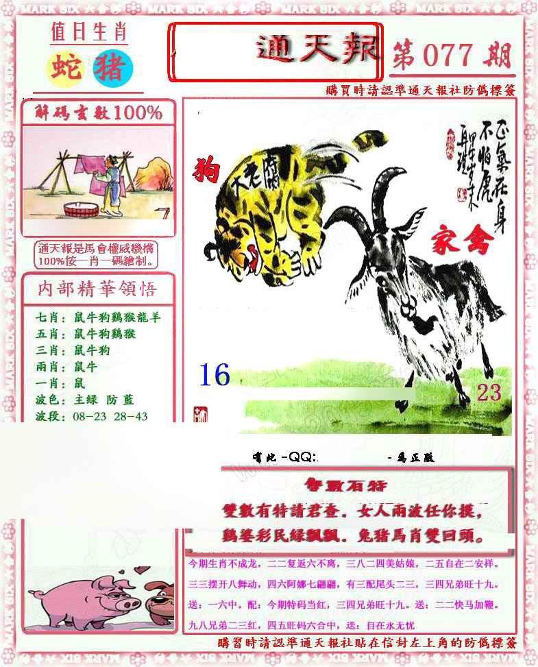 077期马经通天报(另版)