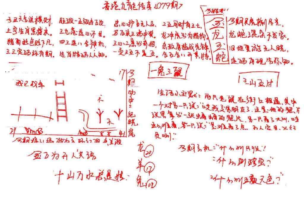 079期九龙传真(手写)