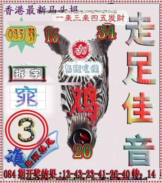 085期香港马头报