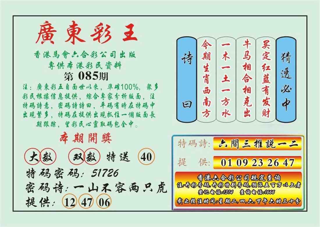 085期广东彩王