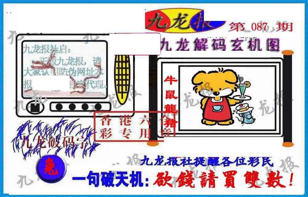 087期九龙报(信封)